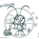 Desenho para colorir - Baratinha