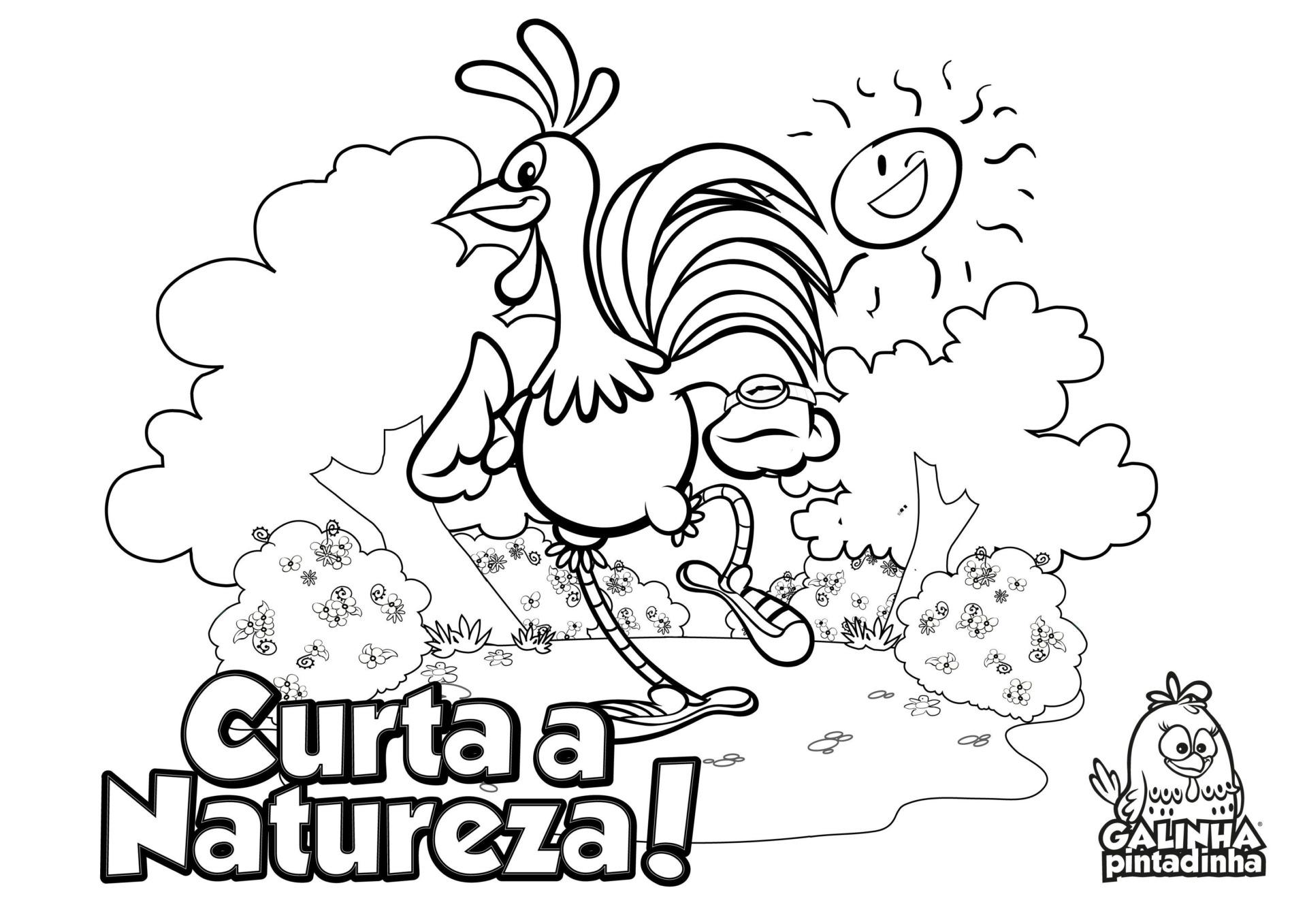Preferência Desenhos para colorir - Site Oficial da Galinha Pintadinha UI23